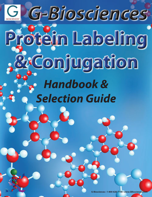 Keys to Protein Protein Labeling & Conjugation
