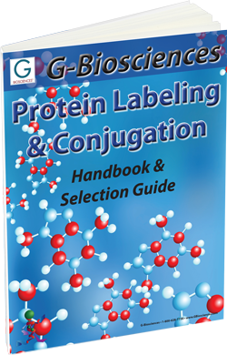 Protein Labeling, Conjugation and Sample Preparation Guide